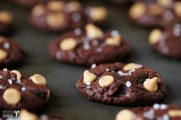 Salted Dark Chocolate Peanut Butter Cookies {great food blogger cookie swap} {Gimme Some Oven}