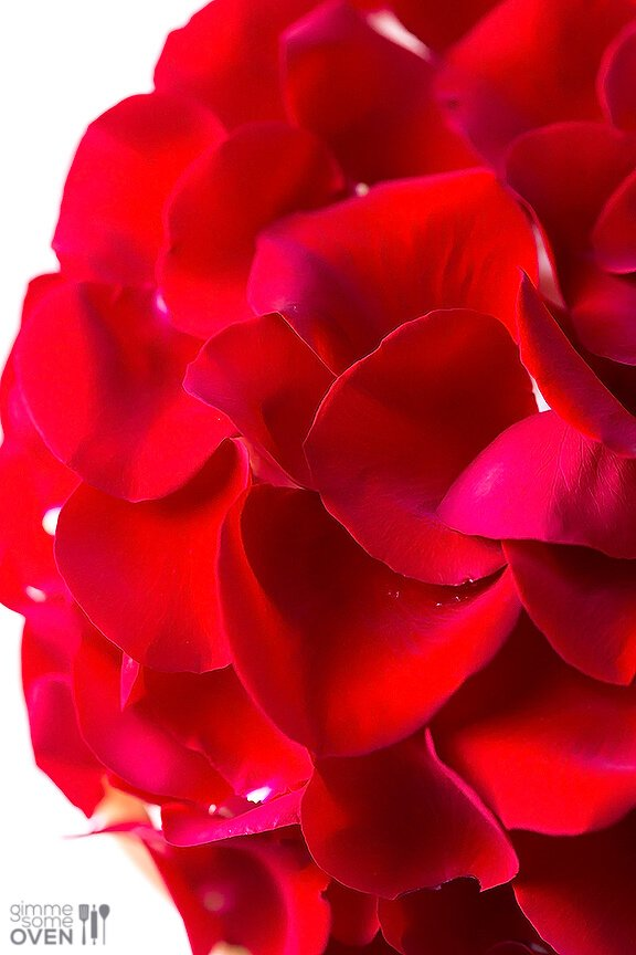 Rose Cake Recipe - made with fresh (edible!) roses   gimmesomeoven.com