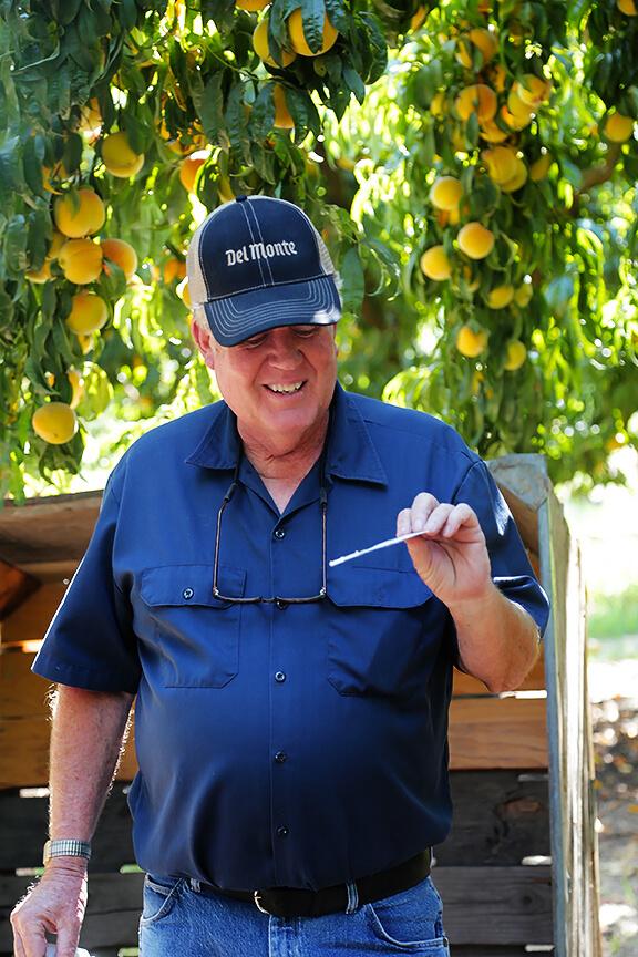 Del Monte Harvest Tour | gimmesomeoven.com