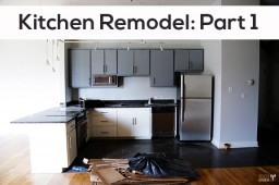 Kitchen Remodel: Part 1
