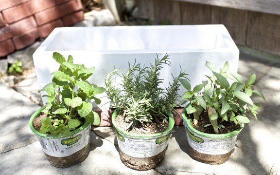 DIY Herb Planter | www.gimmesomeoven.com/style