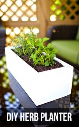 DIY Herb Planter {Gimme Some Oven}