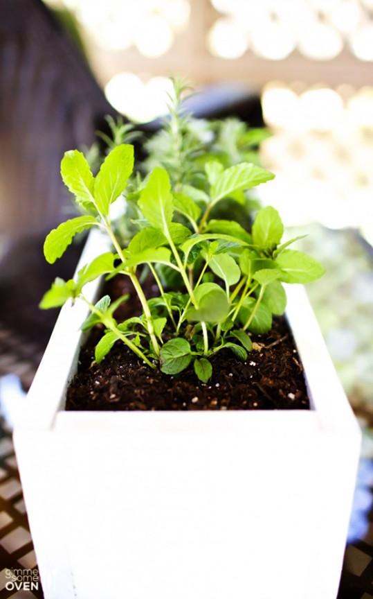 DIY Herb Planter | gimmesomeoven.com #diy