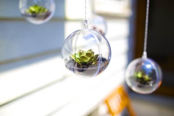 DIY Terrarium Mobile | Gimme Some Oven