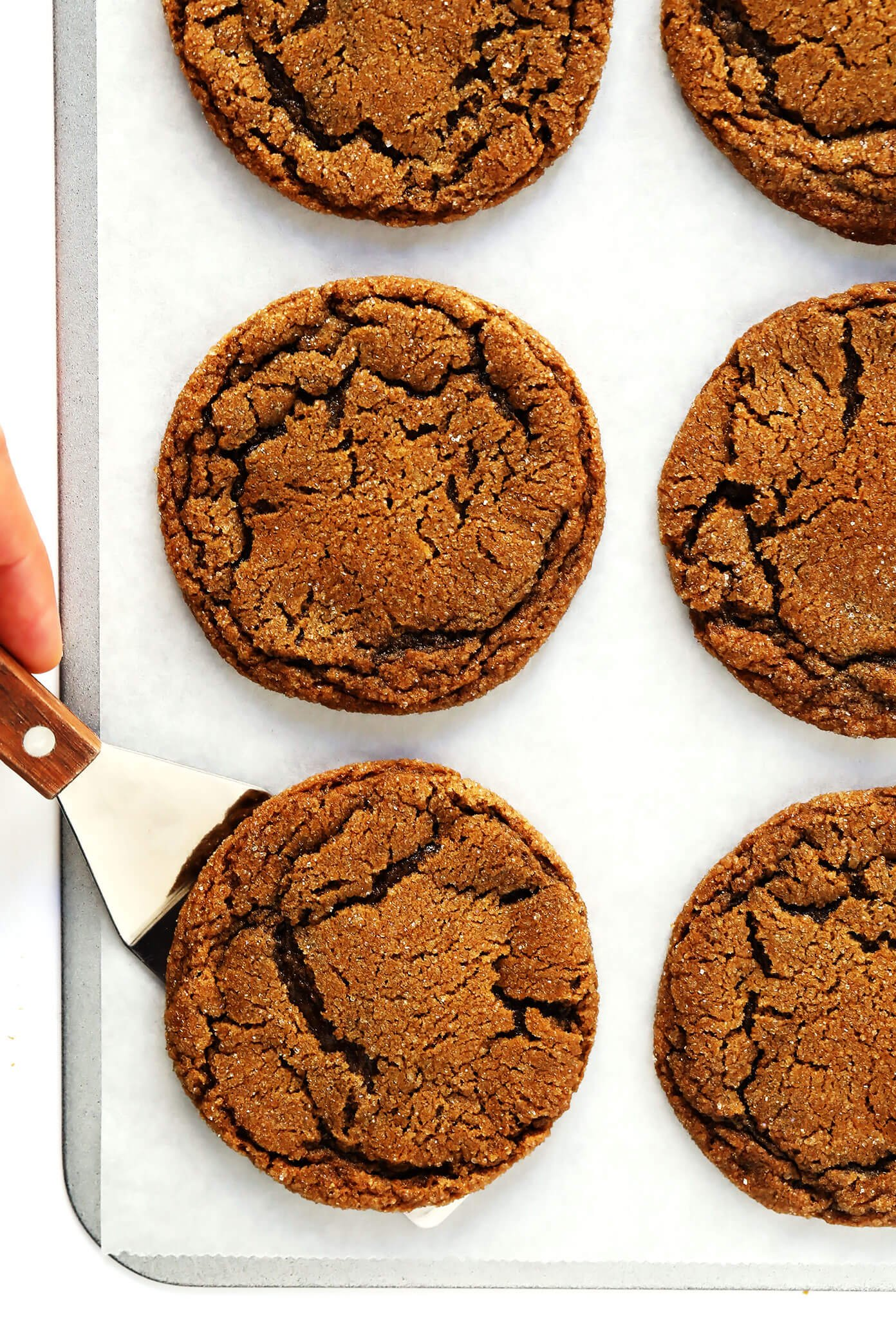 Chewy Ginger Molasses Cookie Recipe