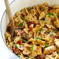 Creamy Garlic Pasta with Chicken and Sun-Dried Tomatoes 5
