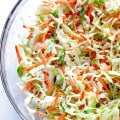 Greek Yogurt Coleslaw -- the classic coleslaw we all love, lightened up with Greek yogurt instead of mayo | gimmesomeoven.com