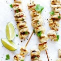 Easy Tequila Lime Chicken Kabobs | gimmesomeoven.com