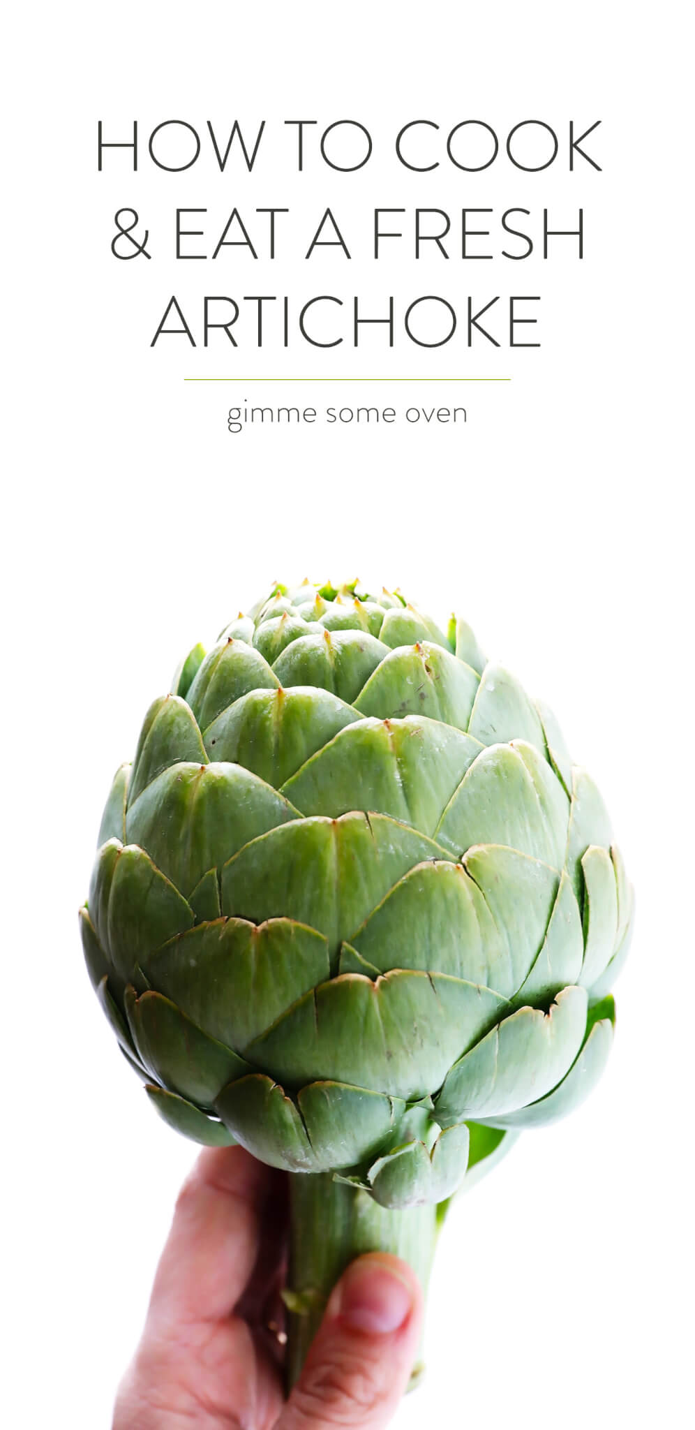 How To Cook and Eat A Fresh Artichoke