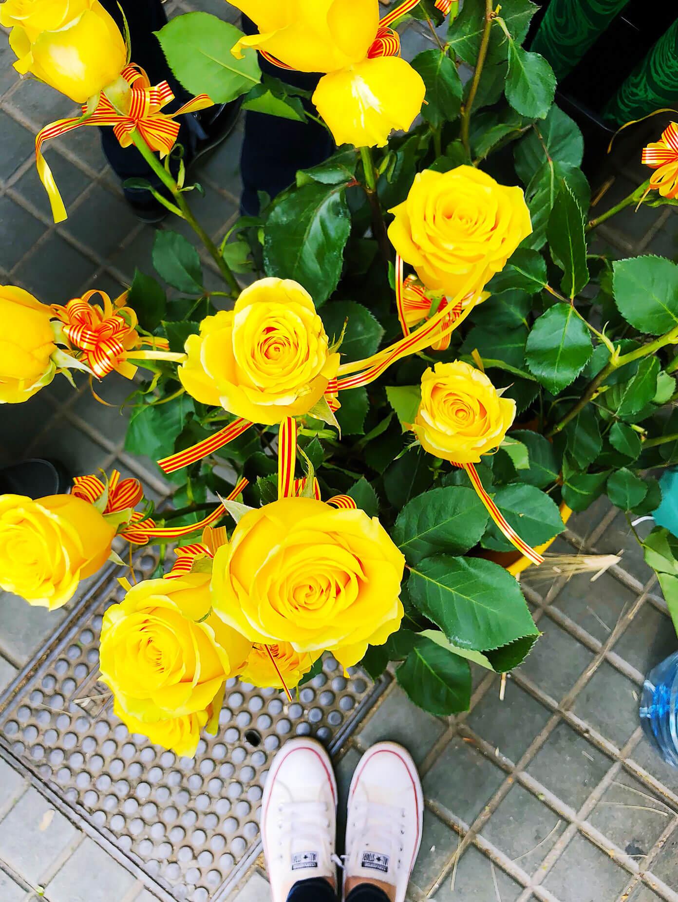 Sant Jordi Roses In Barcelona