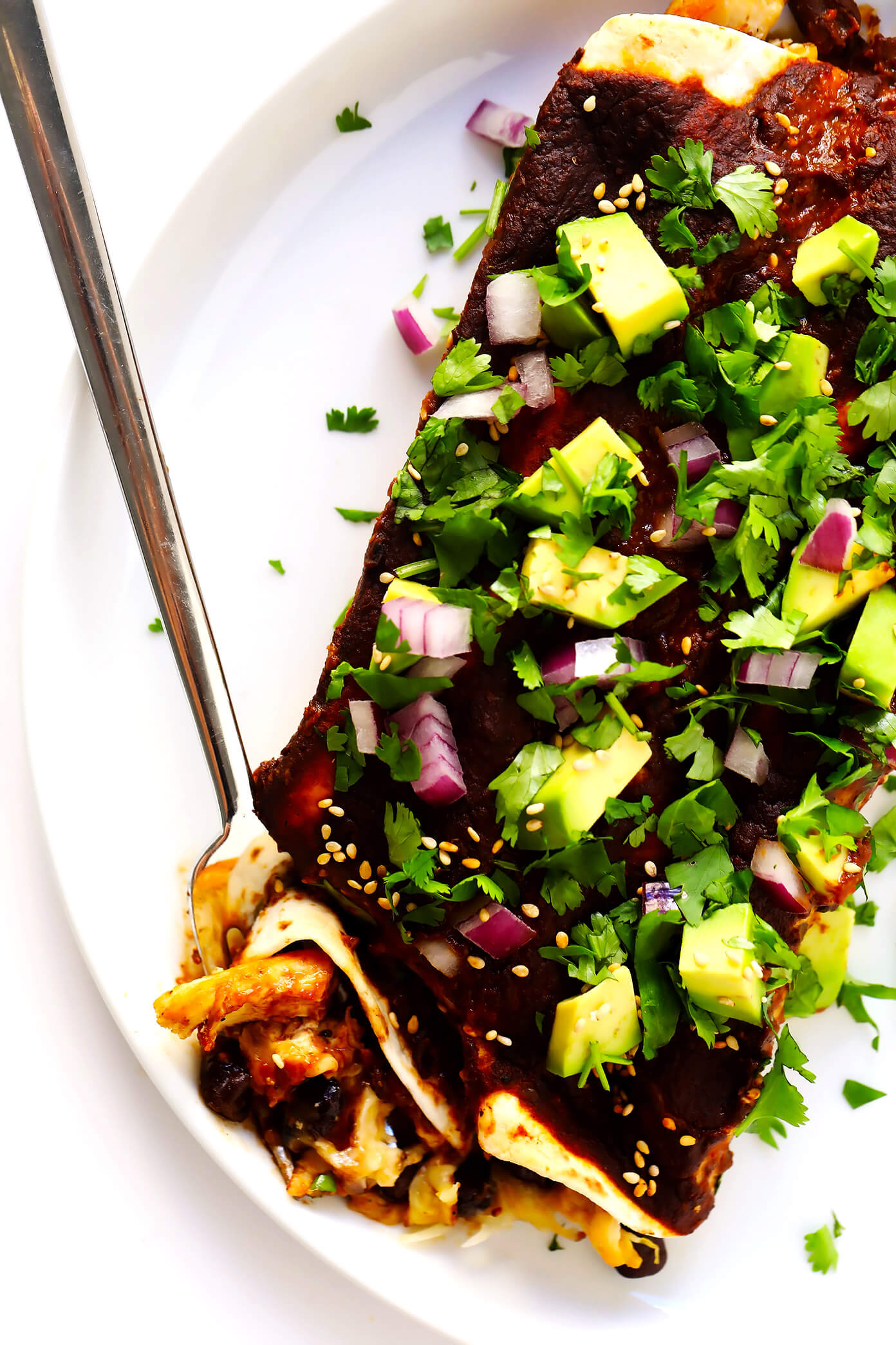 Avocado Mole Enchiladas | Filled with chicken, pork, or your choice of vegetarian fillings