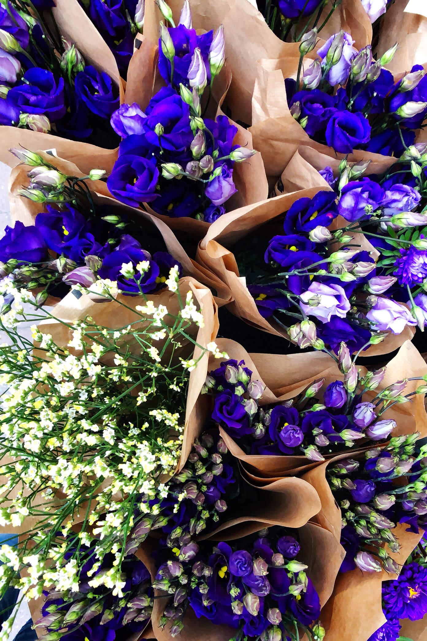 Flower Market in Stockholm, Sweden