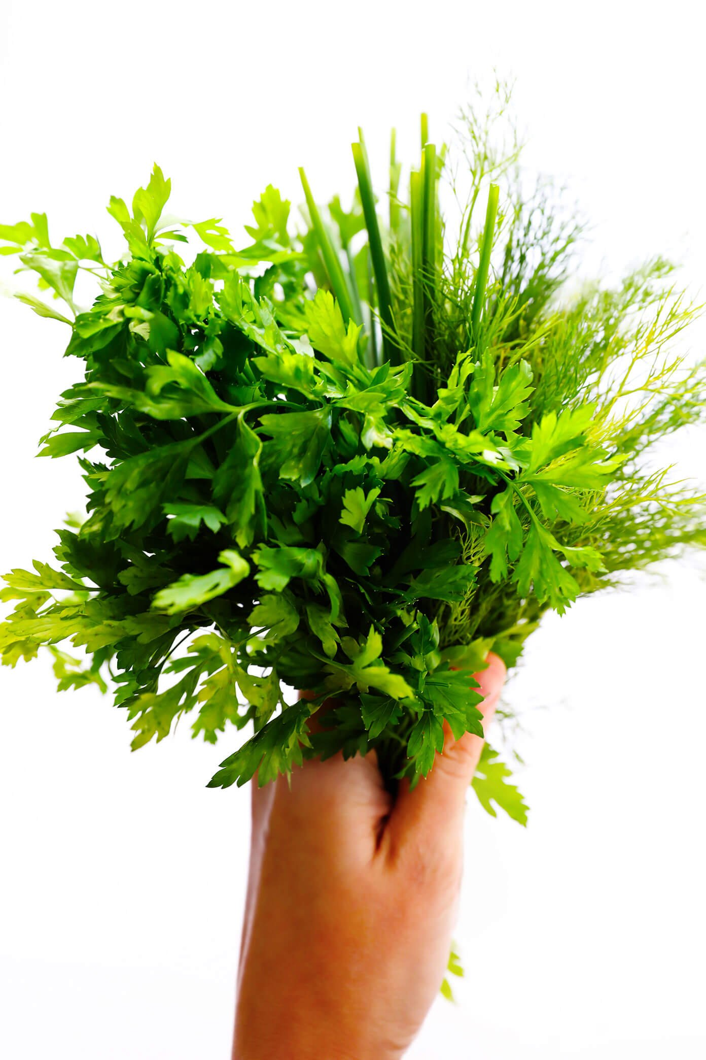 Fresh chives, parsley and dill | Ranch Mashed Potatoes