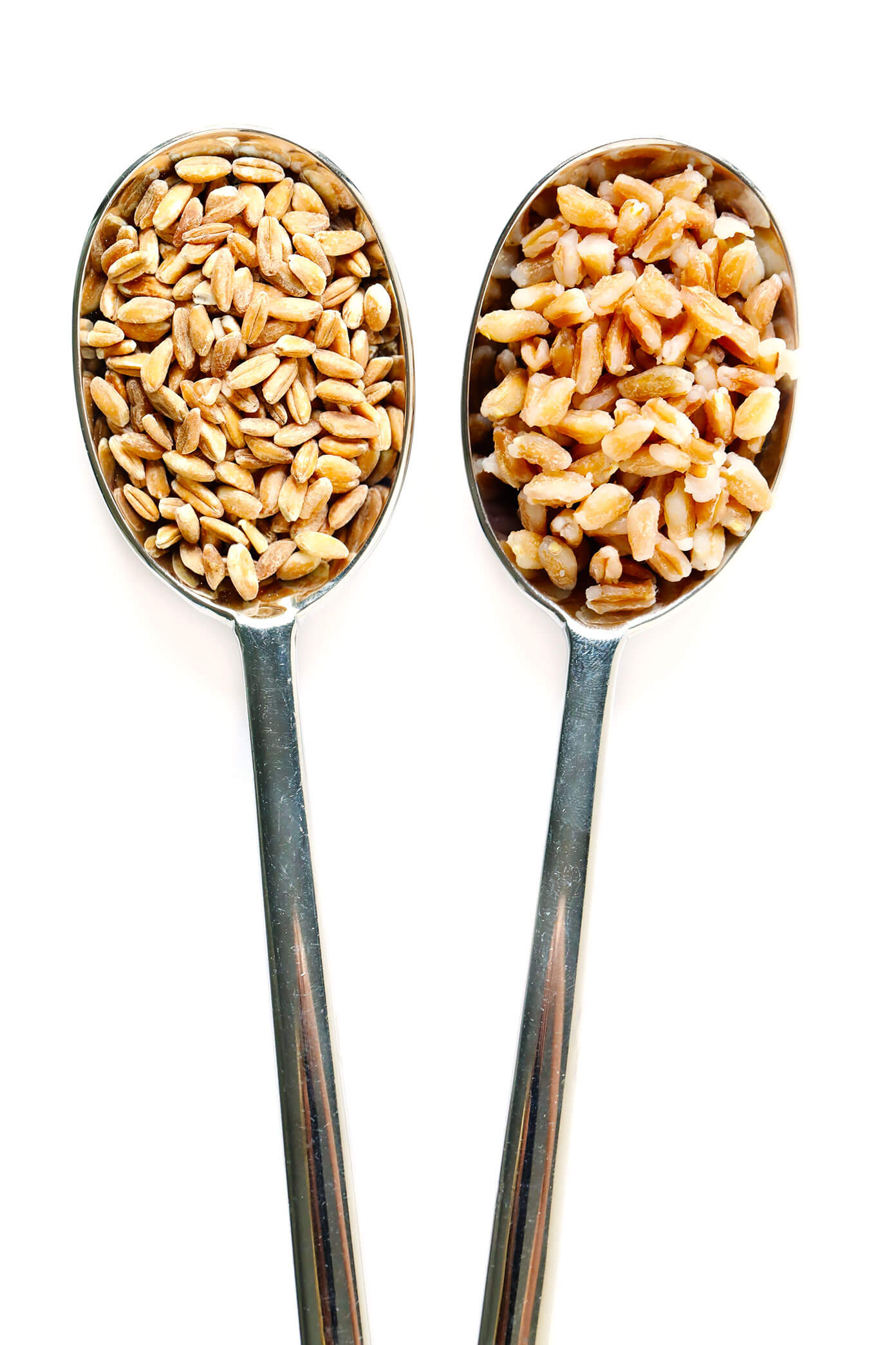 Cooked and Uncooked Farro