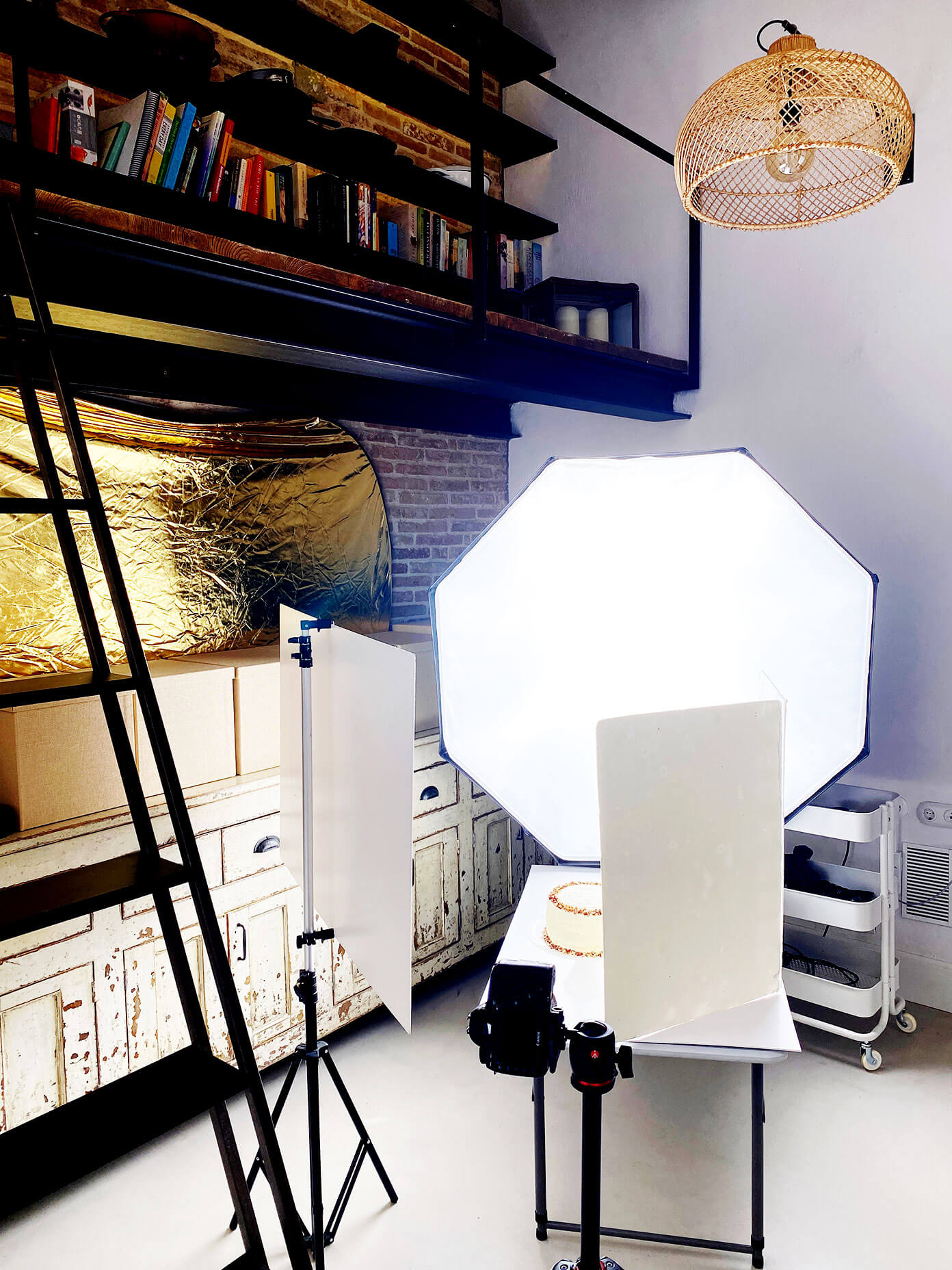 Artificial Lighting Setup