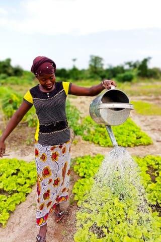 Benkadi Garden with The Wash Project in Mali