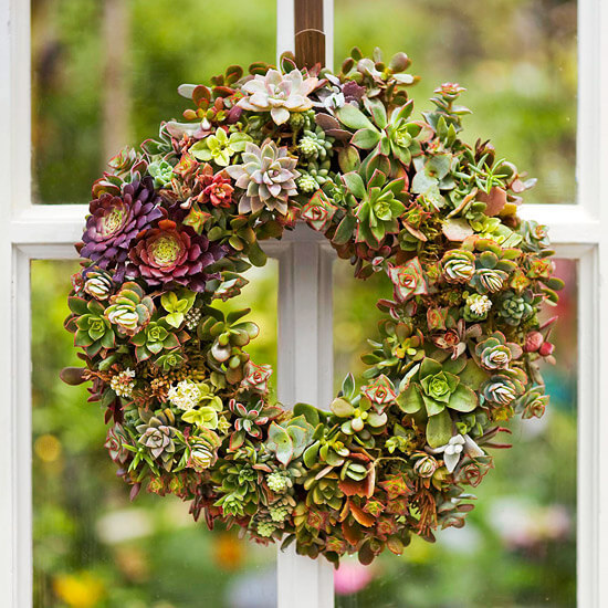DIY Succulent Wreath | Photo from Better Homes & Gardens