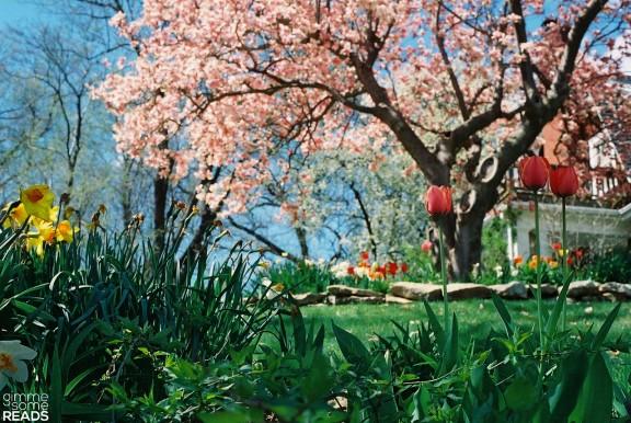 oh spring! | gimmesomereads.com