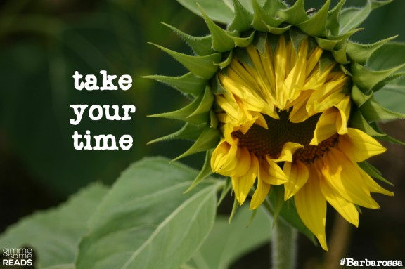 take your time #Barbarossa #quote | gimmesomereads.com