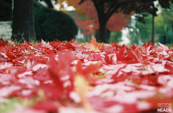 Autumn #EmilyDickenson | gimmesomereads.com