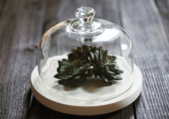 Have a black thumb? Make this simple faux terrarium! | www.gimmesomestyleblog.com #diy #terrarium