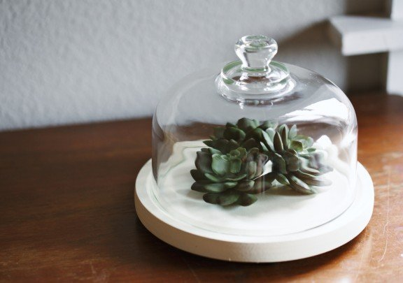 Have a black thumb? Make this faux terrarium for your home! | www.gimmesomestyleblog.com #terrarium #diy