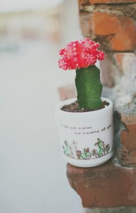 Earth Day | www.gimmesomestyleblog.com
