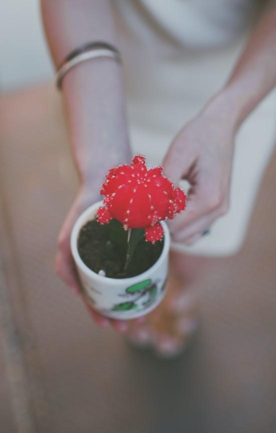 Earth Day! | www.gimmesomestyleblog.com