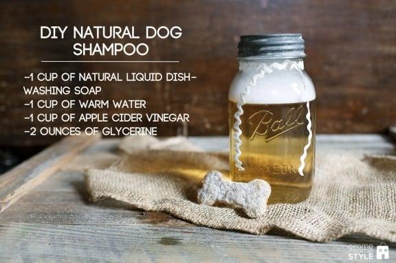 DIY Natural Dog Shampoo | www.gimmesomestyleblog.com