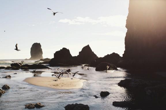 Cannon Beach, Oregon | www.gimmesomestyleblog.com #travel #beach #ocean