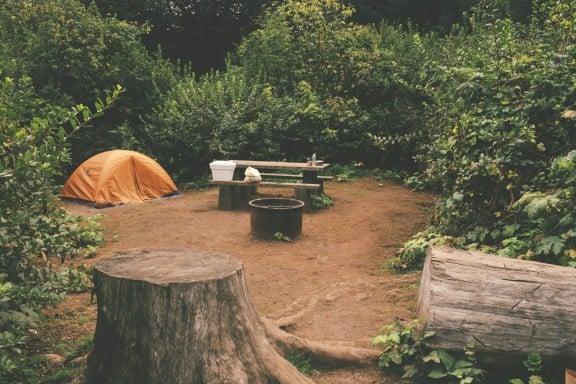 California Redwoods | www.gimmesomestyleblog.com
