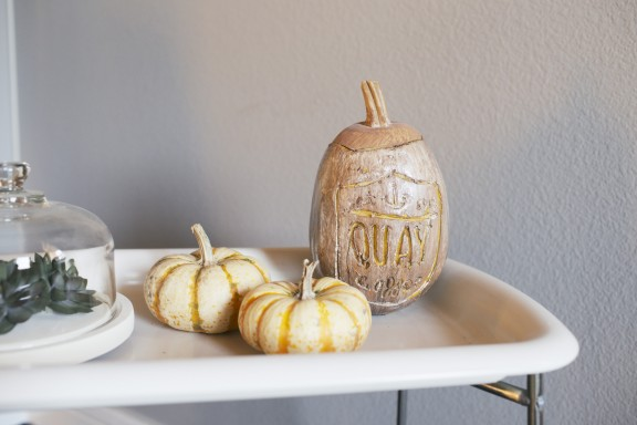 Five simple, disposable, apartment friendly, and nearly free fall decorations | gimmesomestyleblog.com
